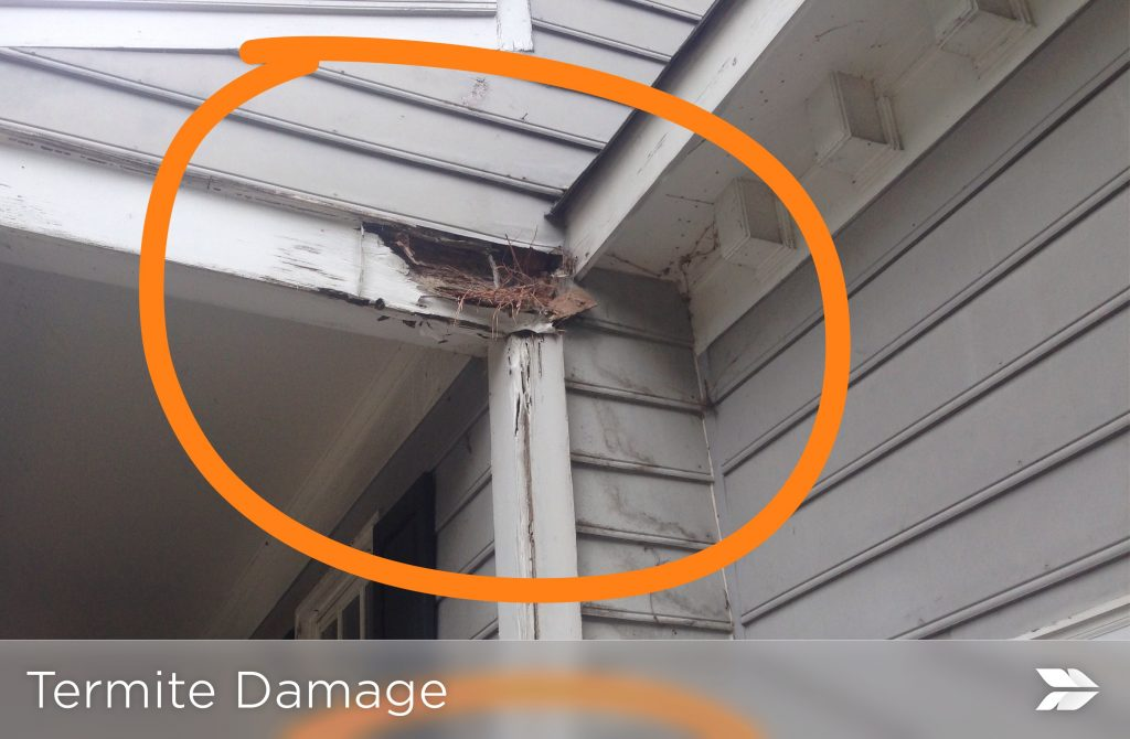 Termite Damage Exterior Home